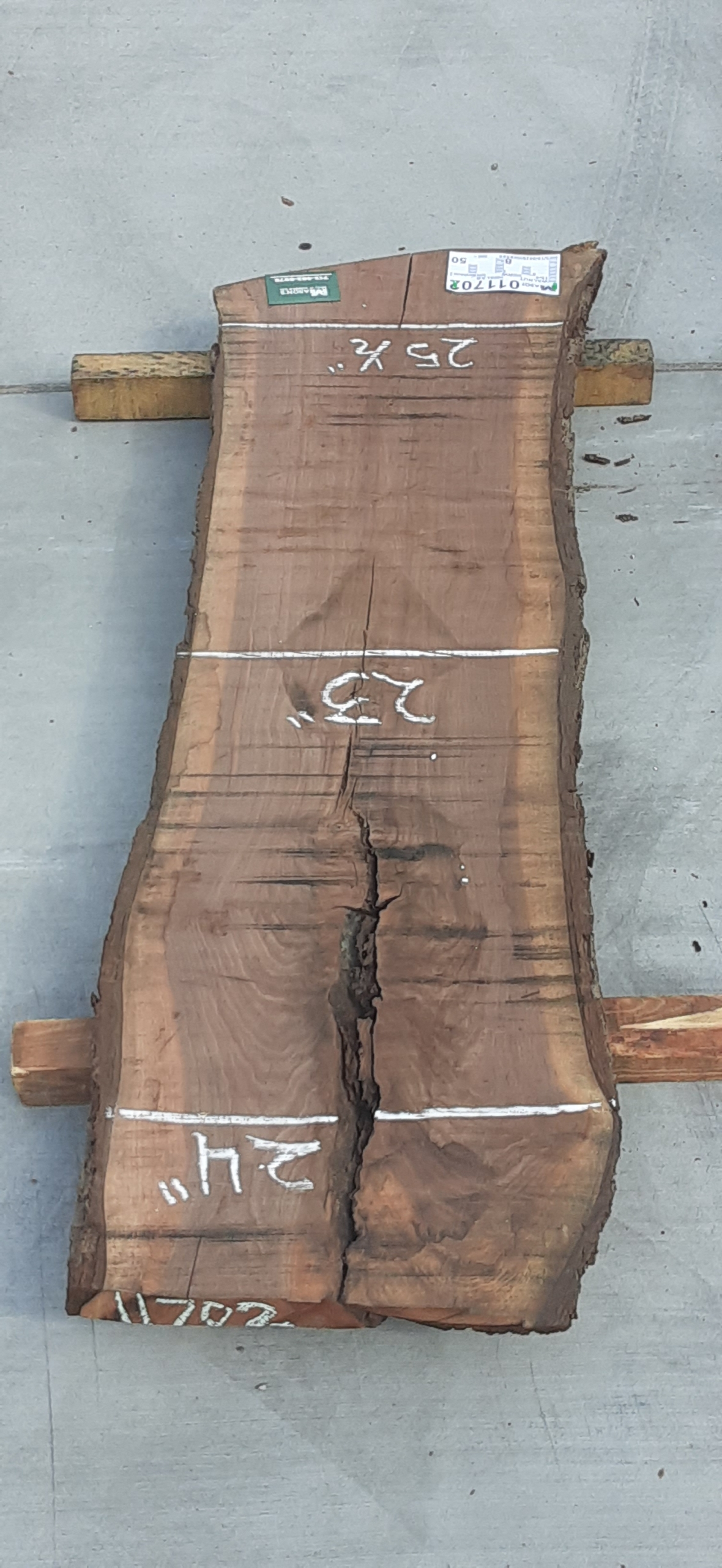 Walnut Slab 11702 Image